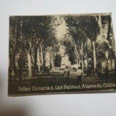 Postales: POSTAL ORIGINAL. 6.5 X 4.6CM. DÉCADA 30. Nº 1397. LAS PALMAS. ALAMEDA COLON. Lote 184047460