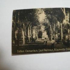 Postales: POSTAL ORIGINAL. 6.5 X 4.6CM. DÉCADA 30. Nº 1397. LAS PALMAS. ALAMEDA COLON. Lote 184143173
