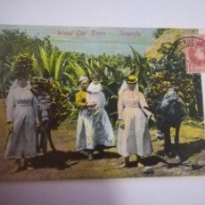 Postales: TARJETA POSTAL. TENERIFE. WOOD GAF ERERS. 7873. Lote 185925620