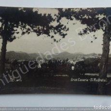 Postales: GRAN CANARIA. EL MADROÑAL. FOTO BAENA Nº 71. Lote 186351887