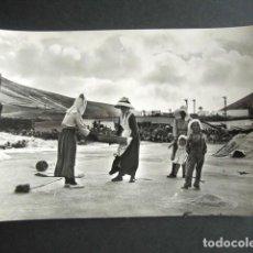 Postales: POSTAL LANZAROTE. LABOR CAMPESINA. FOTO GABRIEL FERNANDEZ. . Lote 186419015