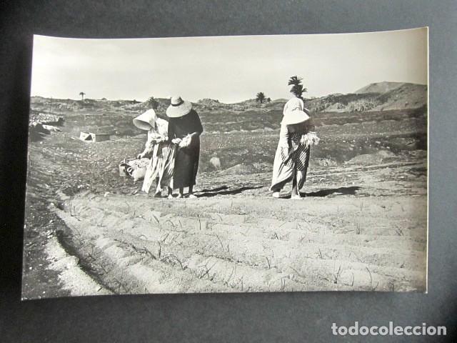 POSTAL LANZAROTE. LABORES DE SIEMBRA. FOTO GABRIEL FERNANDEZ. (Postales - España - Canarias Moderna (desde 1940))