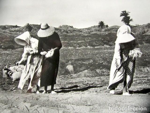 Postales: POSTAL LANZAROTE. LABORES DE SIEMBRA. FOTO GABRIEL FERNANDEZ. - Foto 2 - 186419043