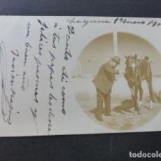 Postales: LA LAGUNA TENERIFE ENERO 1904 MILITAR CON CABALLO POSTAL FOTOGRAFICA REVERSO SIN DIVIDIR. Lote 190936318