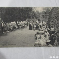 Postales: LAS PALMAS - LAVANDERAS - S/C. Lote 191170215