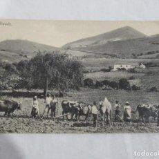 Postales: ARAUDO - RODRIGUES BROS. PUERTO DE LA LUZ - S/C. Lote 191178140