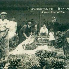 Postais: LAS PALMAS. EMPAQUETANDO BANANAS. HACIA 1920. FOTOGRÁFICA.. Lote 193280960
