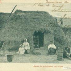 Postales: TENERIFE. GRUPO DE TRABAJADORES DEL CAMPO. CIRCULADA EN 1903. RARA.. Lote 193281403