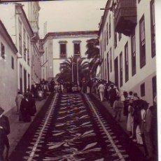 Postales: TENERIFE OROTAVA ALFOMBRA FLORES JG 80. Lote 193983945