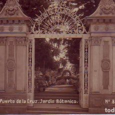 Postales: TENERIFE PUERTO DE LA CRUZ-JARDIN BOTANICO JG 85. Lote 193984113