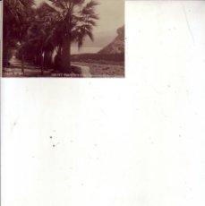 Postales: TENERIFE PUERTO DE LA CRUZ-AVENIDA DE AGUILAR Y QUESADA JG 108. Lote 193984241