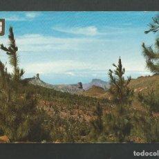 Postales: POSTAL SIN CIRCULAR - TEJEDA 205 - GRAN CANARIA - EDITA ESCUDO DE ORO. Lote 194272208