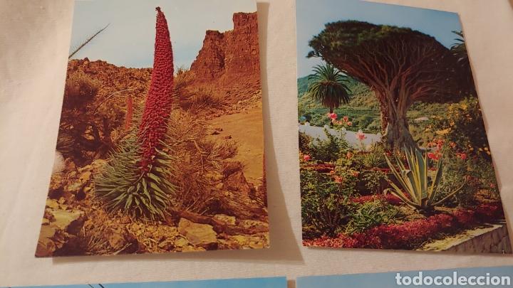 4 POSTALES TENERIFE (Postales - España - Canarias Moderna (desde 1940))