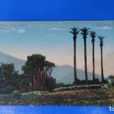 Postales: TARJETA POSTAL LAS PALMAS DE GRAN CANARIA - 32 LAS PALMAS - PERESTRELLO. Lote 194876325