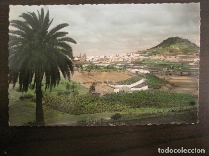 ARUCAS-VISTA PARCIAL-ED·ARRIBAS-163-POSTAL ANTIGUA-VER FOTOS-(68.030) (Postales - España - Canarias Antigua (hasta 1939))