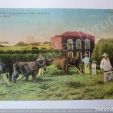 Postales: LAS PALMAS. CAMPESINOS EN LA FAENA DE LA TRILLA. J. PERETRELLO PHOTO. Lote 195331321