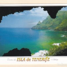 Postales: POSTAL PUNTA DEL HIDALGO. COSTA NORTE. TENERIFE. Lote 195485915