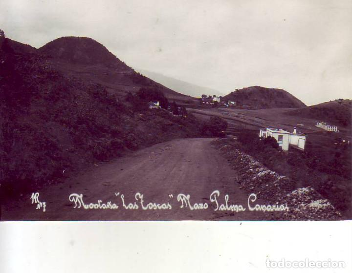 TENERIFE - LA PALMA - MONTAÑA LAS TOSCAS - MAZO (Postales - España - Canarias Antigua (hasta 1939))