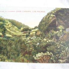 Postales: CUEVAS DE DORAMAS GRAN CANARIA LAS PALMAS COLOREADA S47. Lote 198121988