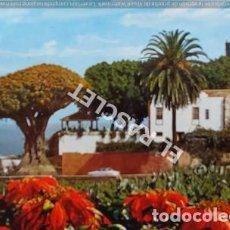 Postales: ANTIGÜA FOTO POSTAL DE TENERIFE - EL DRAGO MILENARIO - CIRCULADA AÑO 1987. Lote 202947162