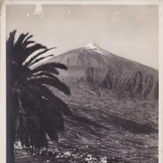 Postales: TENERIFE. VALLE OROTAVA CON EL PICO. ED. FOTO CENTRAL SANTA CRUZ. POSTAL FOTOGRAFICA. Lote 205703208