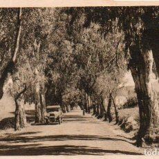 Postales: POSTAL DE MADROÑAL - CARRETERA DEL CENTRO. Lote 206150798