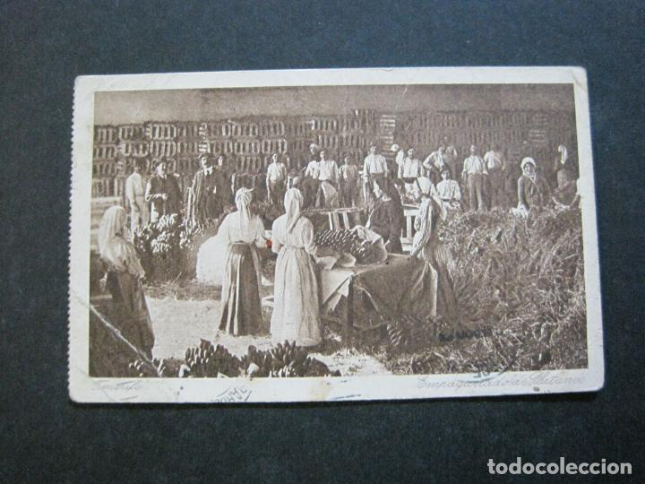 Postales: TENERIFE-EMPAQUETADO DE PLATANOS-POSTAL ANTIGUA-(71.397) - Foto 2 - 207875067