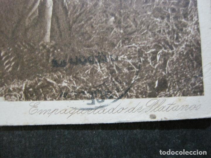Postales: TENERIFE-EMPAQUETADO DE PLATANOS-POSTAL ANTIGUA-(71.397) - Foto 3 - 207875067