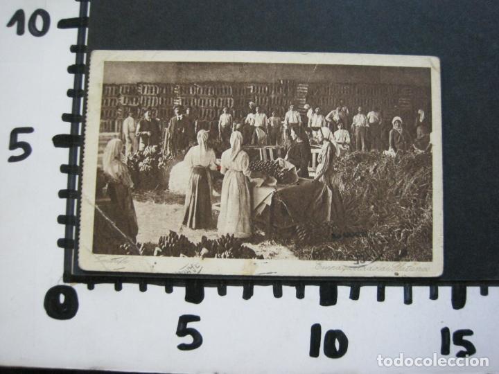 Postales: TENERIFE-EMPAQUETADO DE PLATANOS-POSTAL ANTIGUA-(71.397) - Foto 5 - 207875067