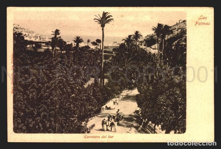 LAS PALMAS CARRETERA DEL SUR TARJETA POSTAL ANTIGUA SIN DIVIDIR EXCELENTE (Postales - España - Canarias Antigua (hasta 1939))