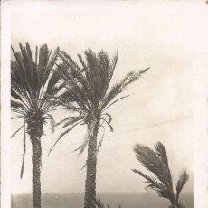 Postais: TENERIFE-PERTO CRUZ-CANARIAS. Lote 218121531