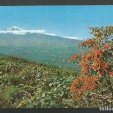 Postales: POSTAL CIRCULADA - TENERIFE 2360 - VALLE DE LA OROTOVA - EDITA ARRIBAS. Lote 218238830