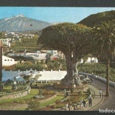 Postales: POSTAL CIRCULADA - ICOD DE LOS VINOS 243 - TENERIFE - EDITA ESCUDO DE ORO. Lote 218242240