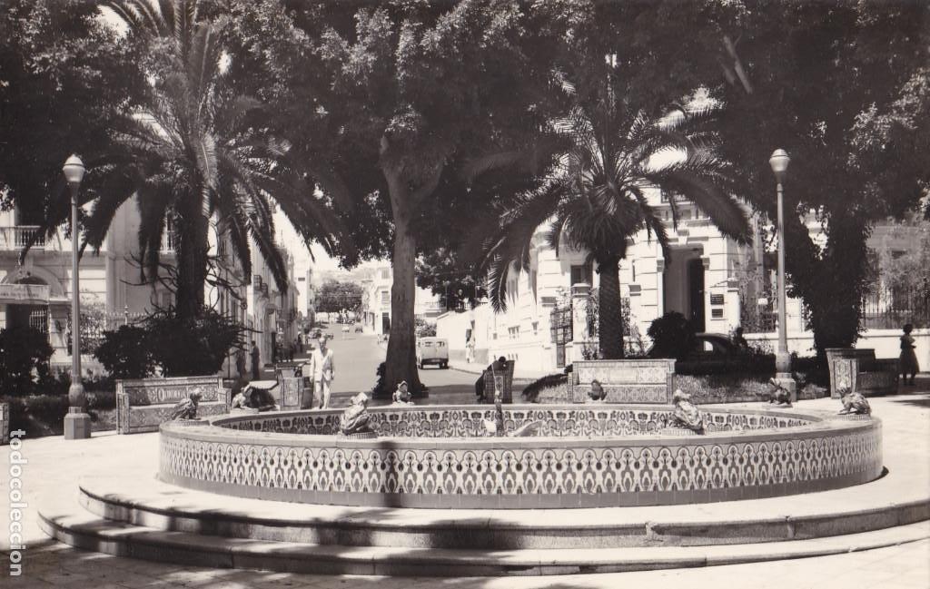 SANTA CRUZ DE TENERIFE PLAZA DE LOS PATOS. ED. LUJO Nº 90. SIN CIRCULAR (Postales - España - Canarias Antigua (hasta 1939))