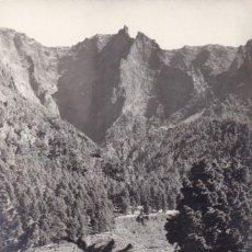 Postales: ISLA SAN MIGUEL DE LA PALMA CALDERA DE TABURIENTE SANTA CRUZ DE LA PALMA. ED. CASA BETHENCOURT. Lote 221703445