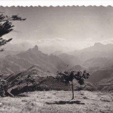 Postales: LAS PALMAS DE GRAN CANARIA, TEJEDA VISTA DE BENTAYGA. ED. SICILIA Nº 52. Lote 221703917