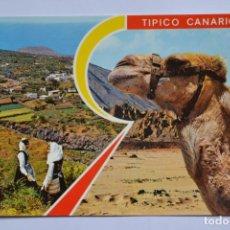 Postales: POSTAL. 1. ISLAS CANARIAS. ED. CASA MAR. NO ESCRITA.. Lote 221836778