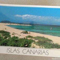 Postales: POSTAL DE CANARIAS. PLAYAS CANARIAS CORRALEJO. SIN CIRCULAR. Lote 222123952