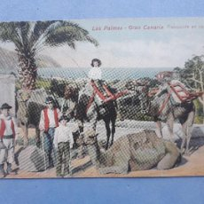 Postales: LAS PALMAS. GRAN CANARIA. TRANSPORTE EN CAMELLOS. FRANQUEADA EN EL AÑO 1910.. Lote 222705856