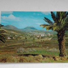 Postales: POSTAL HARIA - LANZAROTE - VALLE DE LAS PALMERAS - AÑO 1978. Lote 222842697