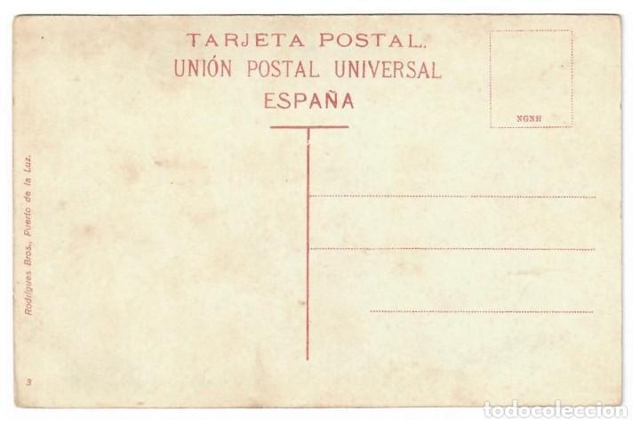 Postales: LAS PALMAS - UN DRAGO - Foto 2 - 224263980
