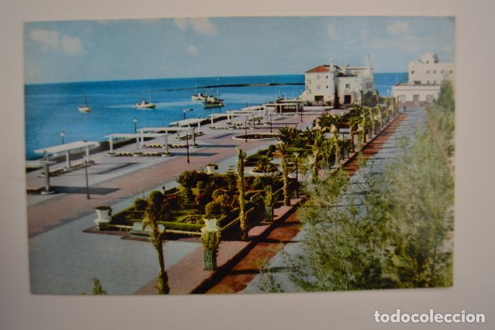 POSTAL. ISLA DE LANZAROTE. SERIE 21 Nº 1. PANORAMA DEL PARQUE MUNICIPAL DE ARRECIFE. ED. ZERKOWITZ. (Postales - España - Canarias Moderna (desde 1940))