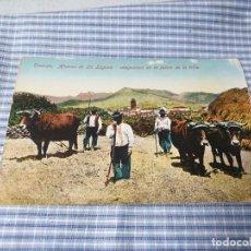 Postales: POSTAL ANTIGUA CANARIAS. TENERIFE. AFUERAS DE LA LAGUNA. CAMPESINOS FAENA TRILLA.. Lote 226641095