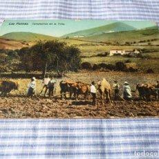 Postales: POSTAL ANTIGUA CANARIAS. LAS PALMAS. CAMPESINOS EN LA TRILLA. Lote 227071845