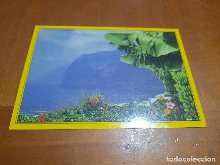 ISLAS CANARIAS. ACANTILADO LOS GIGANTES. POSTAL. SIN CIRCULAR. BUEN ESTADO. DIFICIL (Postales - España - Canarias Moderna (desde 1940))