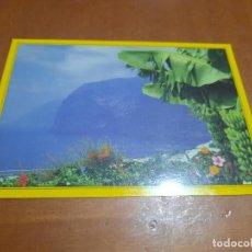 Postales: ISLAS CANARIAS. ACANTILADO LOS GIGANTES. POSTAL. SIN CIRCULAR. BUEN ESTADO. DIFICIL. Lote 227279025