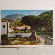 Postales: ICOD DE LOS VINOS, TENERIFE, ISLAS CANARIAS, JOHN HINDE ORIGINAL. Lote 227911675