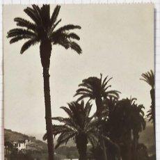 Postales: CANARIAS. LAS PALMAS. ALREDEDORES DE LAS PALMAS EDIT. FOTO F. B. 59 MUY BIEN.. Lote 231411755
