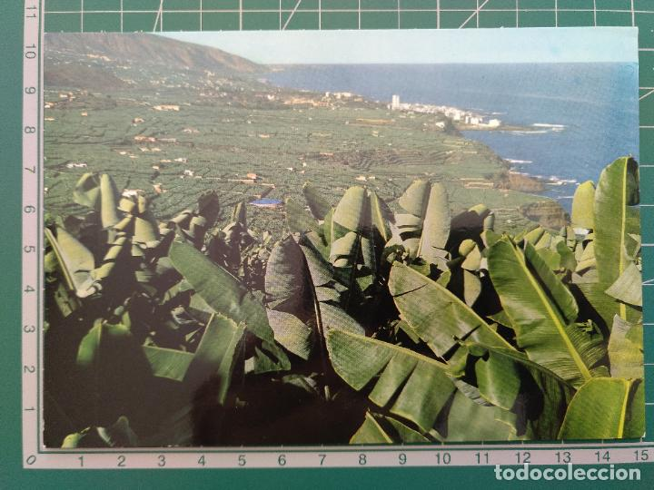 POSTAL 2048 TENERIFE. VALLE DE LA OROTAVA, PUERTO DE LA CRUZ. PEDIDO MÍNIMO 5€ (Postales - España - Canarias Moderna (desde 1940))