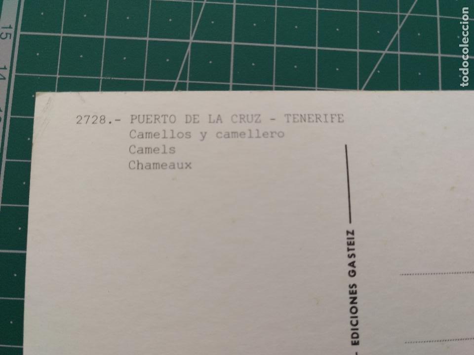 Postales: Postal 2728 Puerto de la Cruz camellos y camelleros. PEDIDO MÍNIMO 5€ - Foto 2 - 235569645